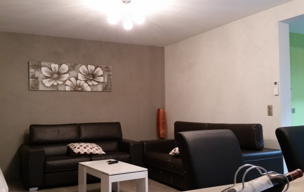 Salon, mobilier, décoration, construction maison, Chenois, Province Luxembourg, Belgique